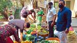 direct vegetables sell status in region