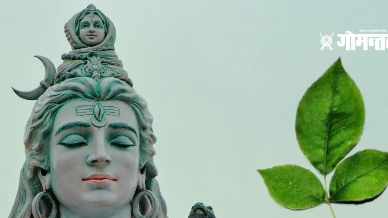 Mahashivaratri 2021 Lord Shivas favorite bel leaf is rich in health benefits