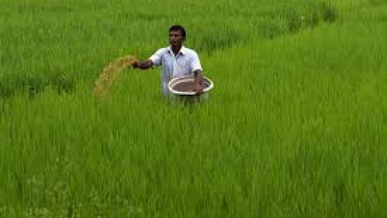 No shortage of fertilizers in kharif season: Gowda