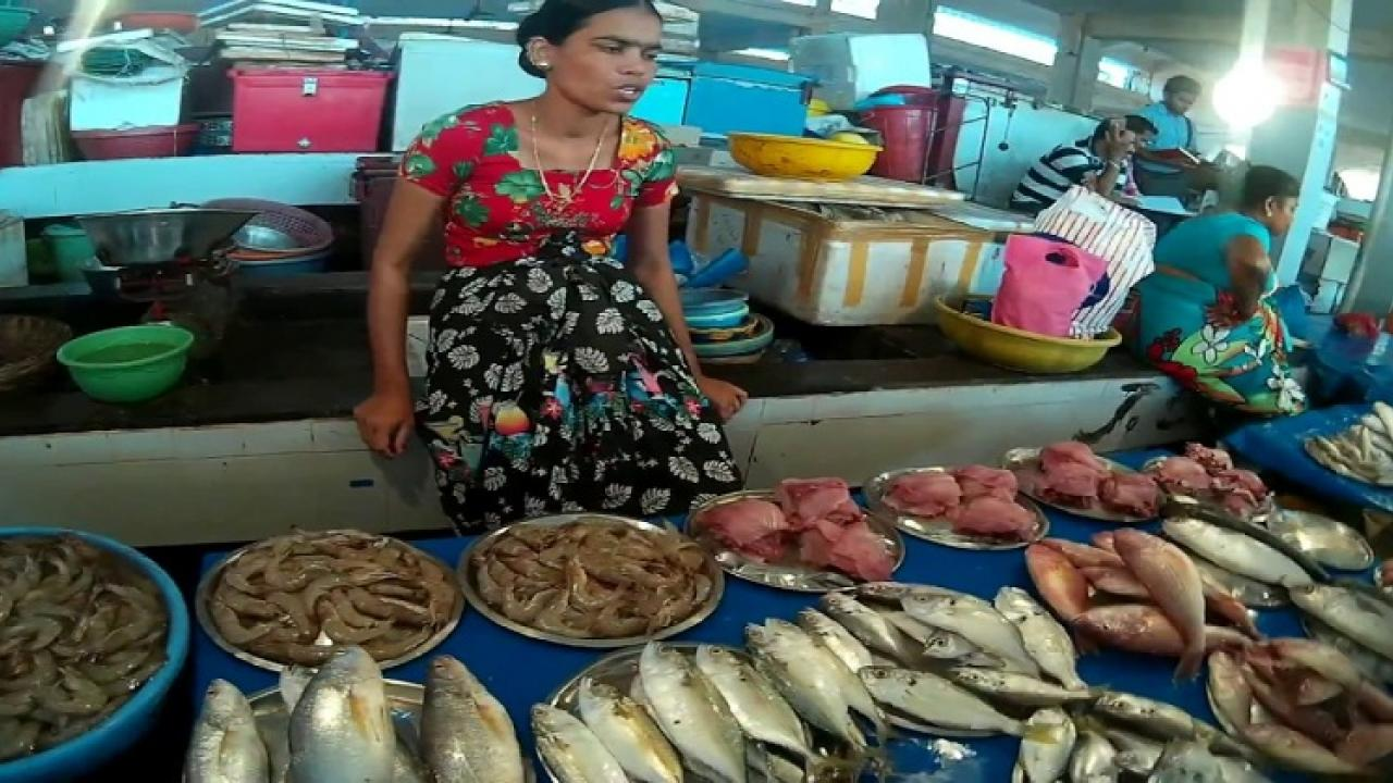 Margaon Wholesale Fish Market Association petition rejected by goa court