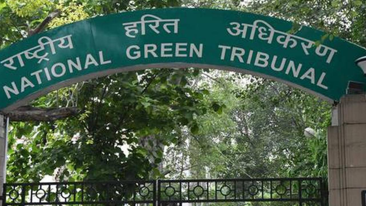 national green tribunal orders 46.11 Sq Km as a private forest land in Goa