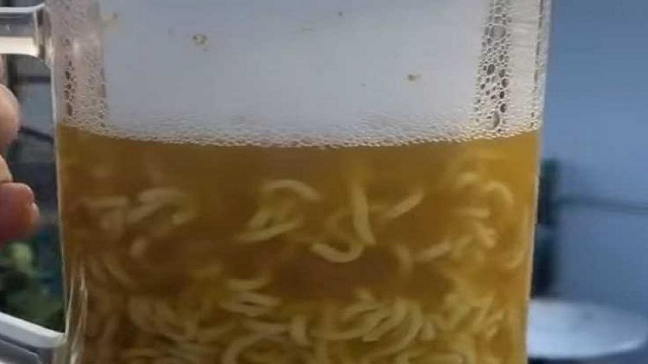 Beer Maggie is being sold at a restaurant in Delhi