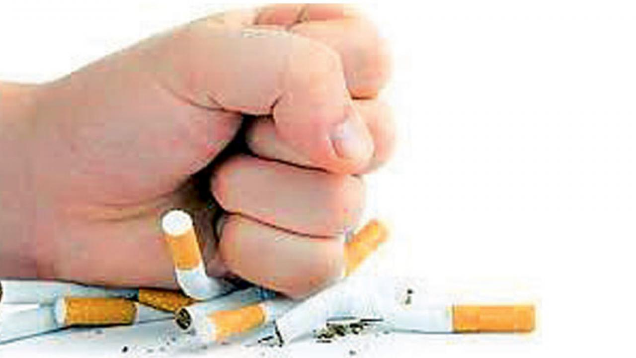 National Green Tribunal directs CPCB to lay down guidelines for disposal of cigarette, bidi butts in three months