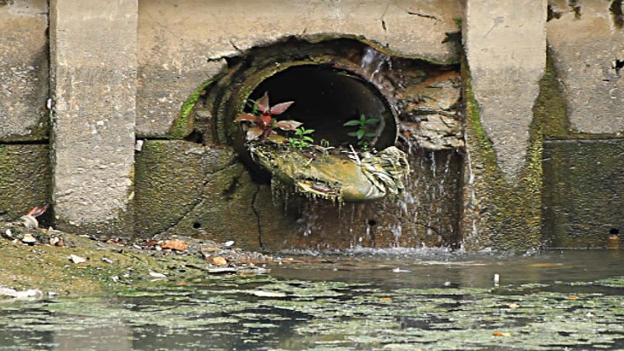 Centre sewage, insistence for drainage project