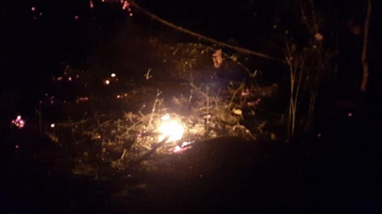 A fire broke out at the Bandhavgarh Tiger Reserve in Madhya Pradesh