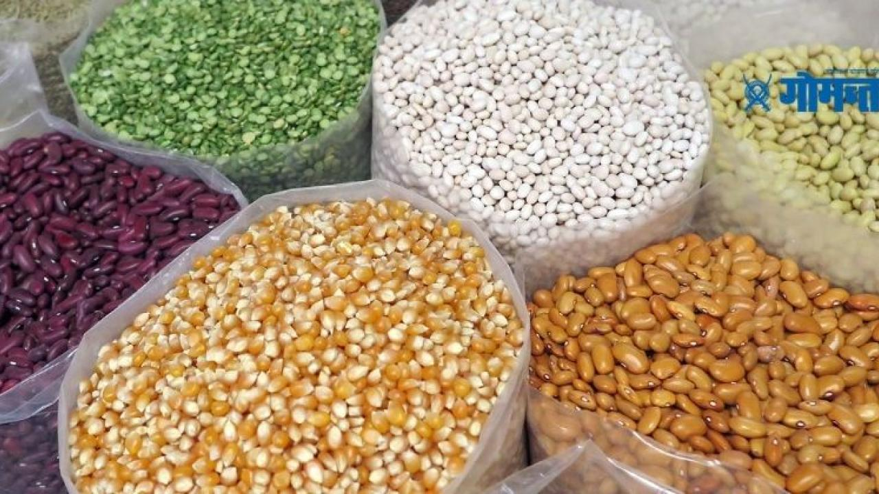 The Goa government has no plans to encouraged cereals