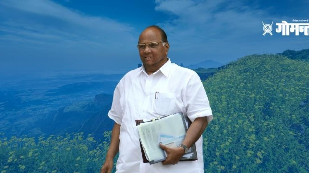 Sarad Pawar said Cooperation from Mahavikas Aghadi will benefit Konkan development