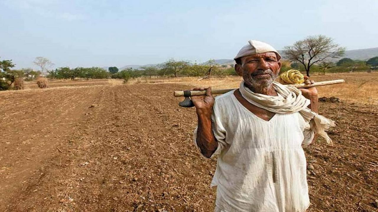 The contribution of the Rural Development Committee is being deliberately ignored