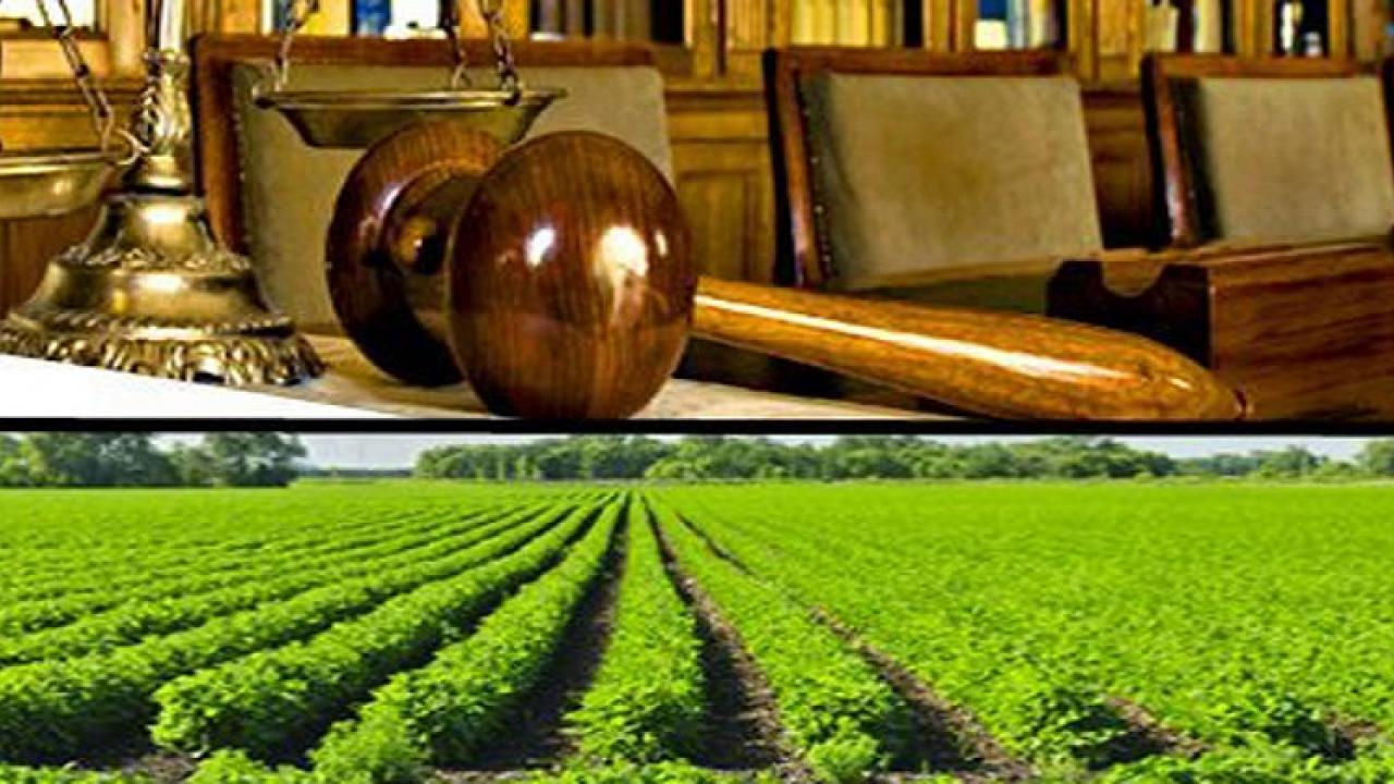 The Central Government should be repealed All three Agricultural laws