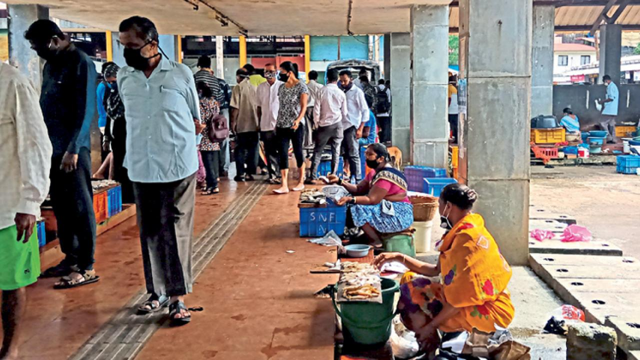Price hike in fish market at Dicholi; demand for broiler chicken