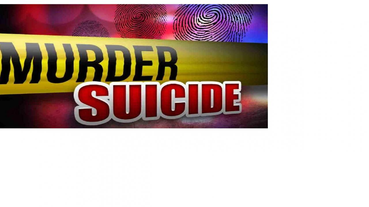 after killing girlfriend boy commits suicide in goa