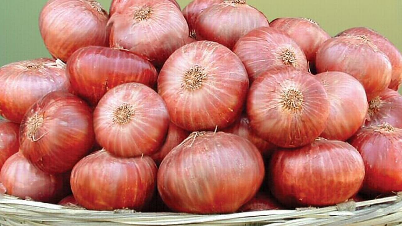 Ration card holders to get only 1 kilogram onions instead of 3 kilograms