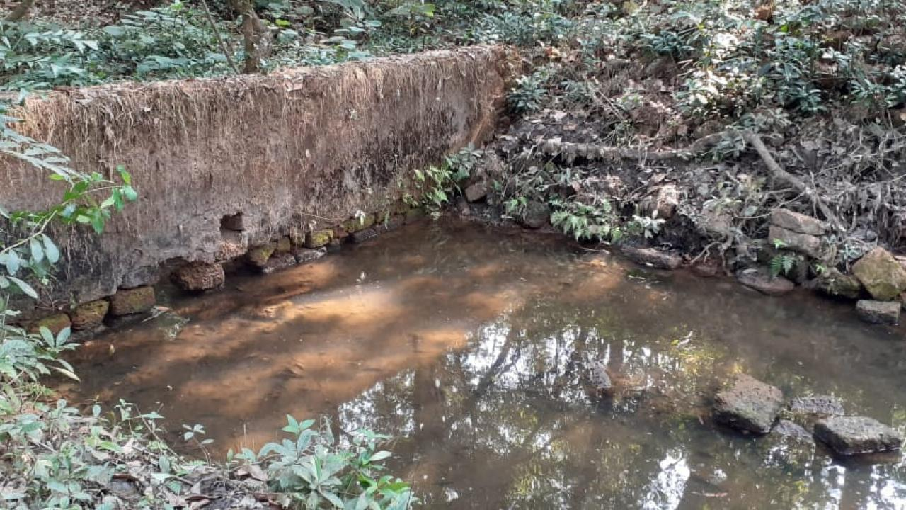 Goa: Conservation of traditonal sources of water is important