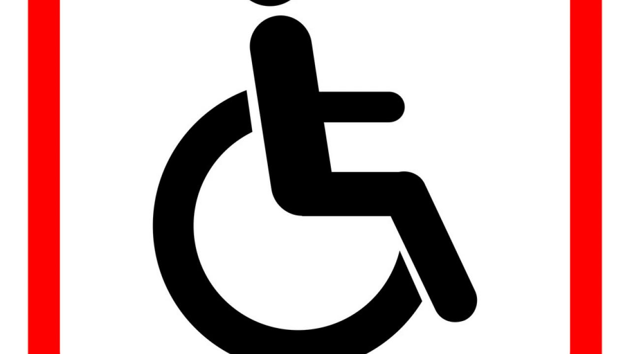 Assistance to persons with disabilities at the hands of the Minister of Social Justice