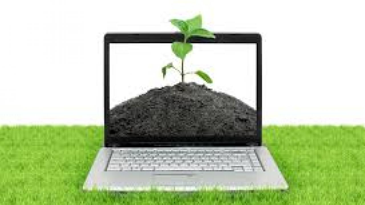 Online training conducted by the Regional Center for Organic Farming