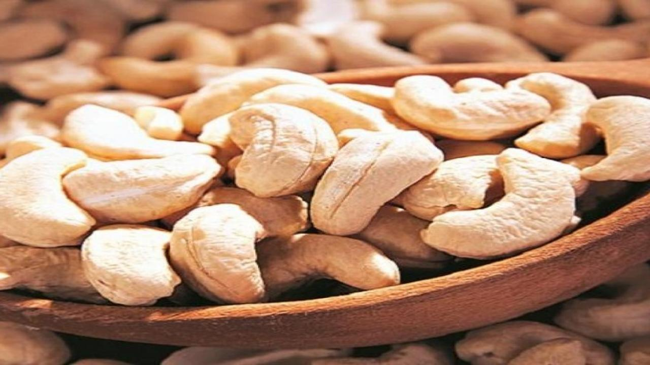 Goa government announces cashew price