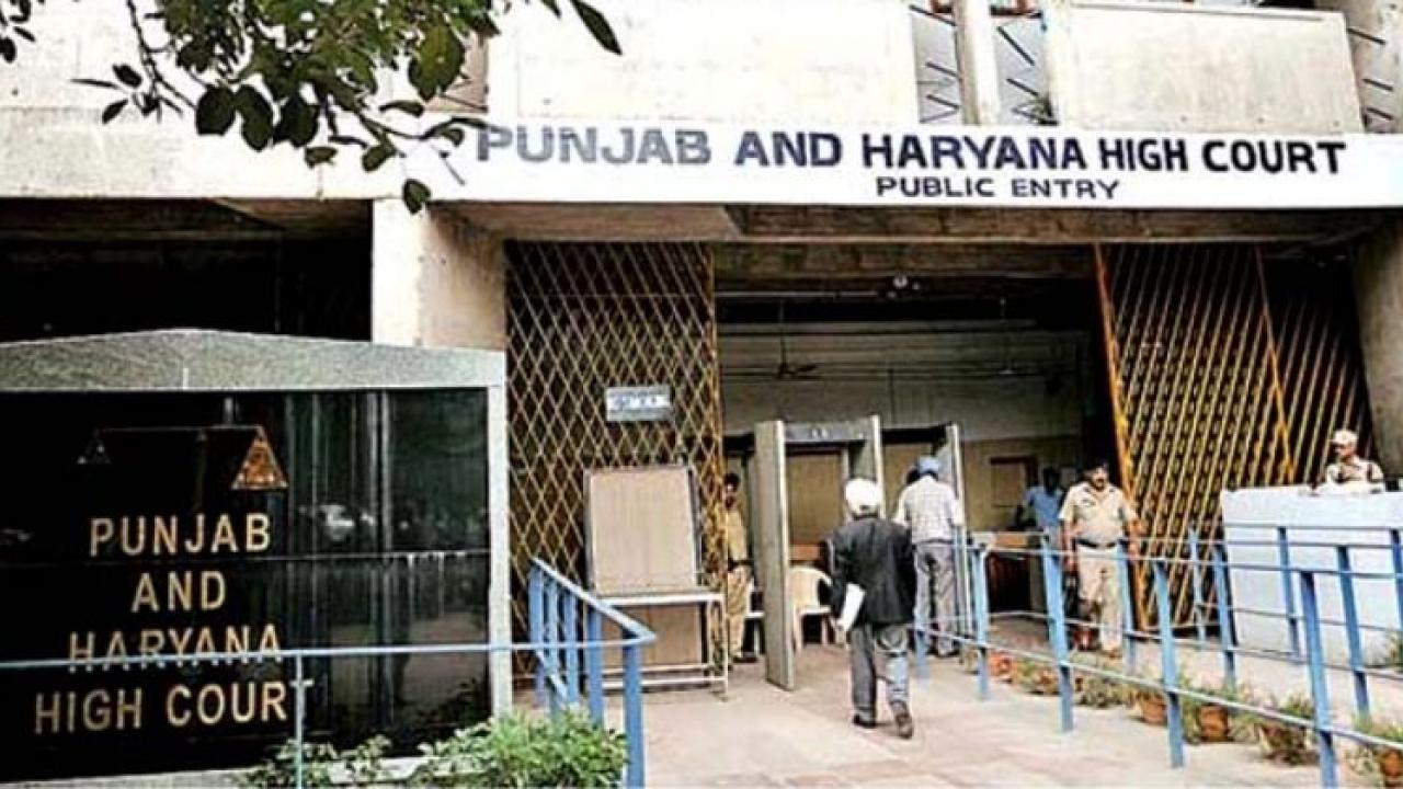 Punjab Haryana High Court verdict Live in relationship is not socially and morally acceptable