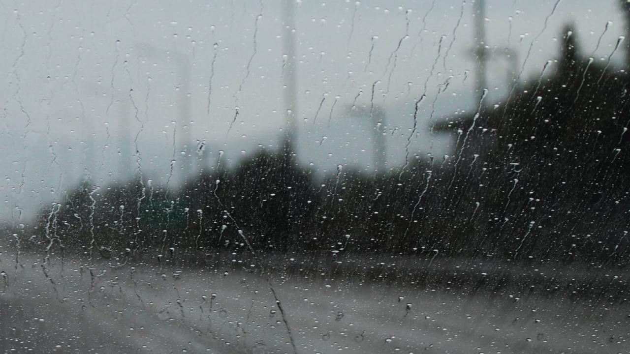 Heavy rains lashed the state