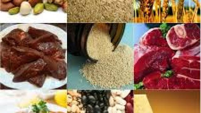 New opportunities opened up in the field of food processing