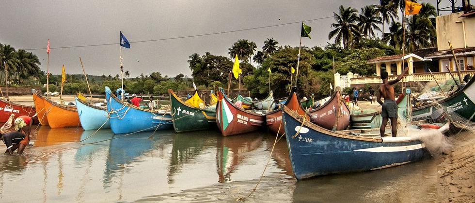 Goa: Increase in fish prices due to declining income; fisherman worried