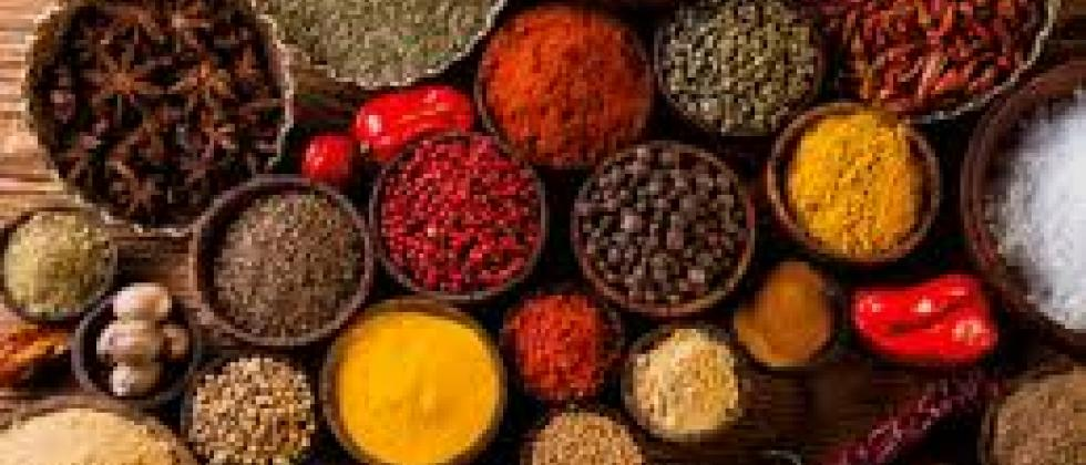 Presentation of the program 'Vedic Food and Spices of India'
