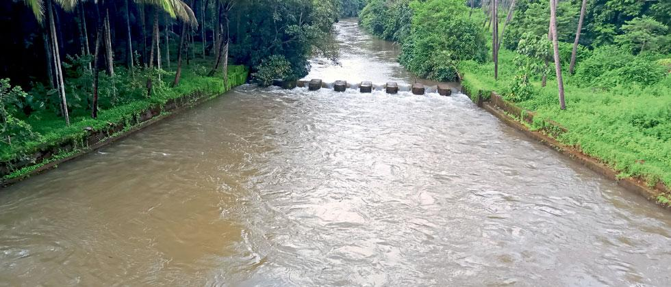 Rains ease in Goa, water level starts reducing