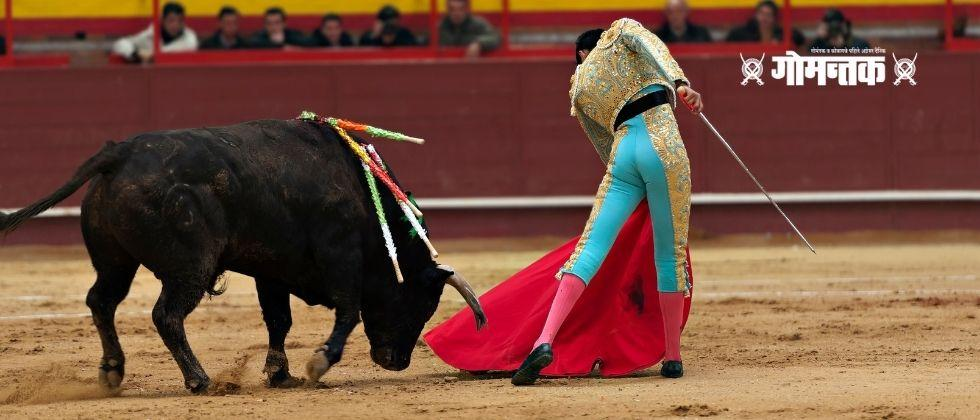 Special police squad pays attention to bullfighting organizers in Goa
