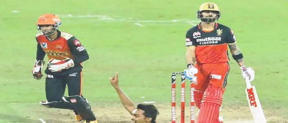 Sunrisers Hyderabad beats Royal Challengers Bangalore and enters Qualifier 2