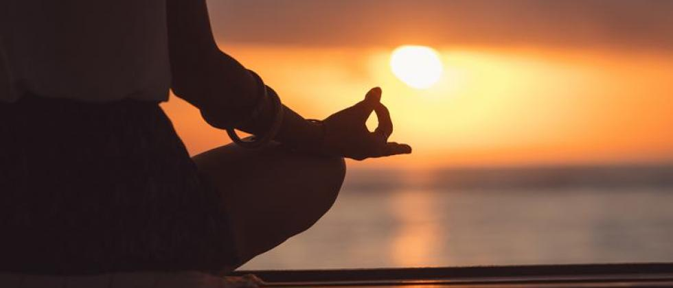 Broadcast of the preview program on the occasion of International Yoga Day 2020 on DD News on June 10