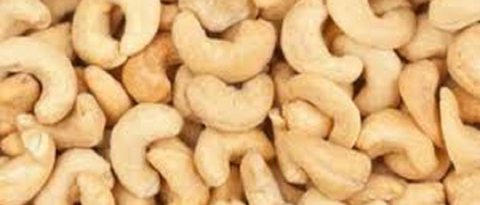 Foreign cashew nuts affect rates, says Prakash Velip
