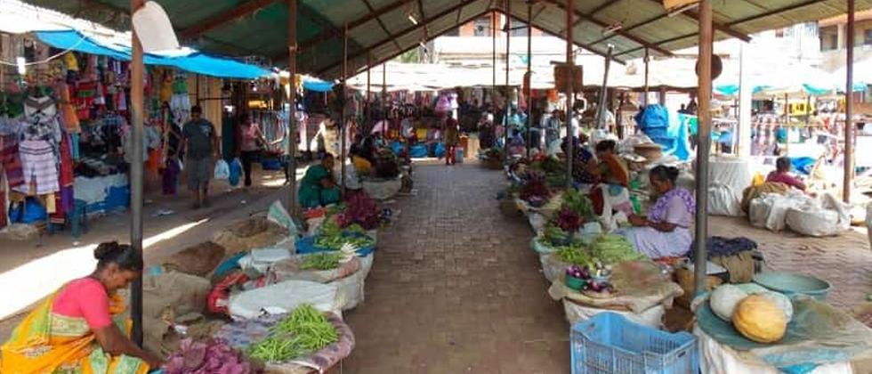 Goa: Fish and vegetables expensive in Canacona