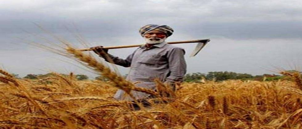 The self sufficiency of farmers is self reliance