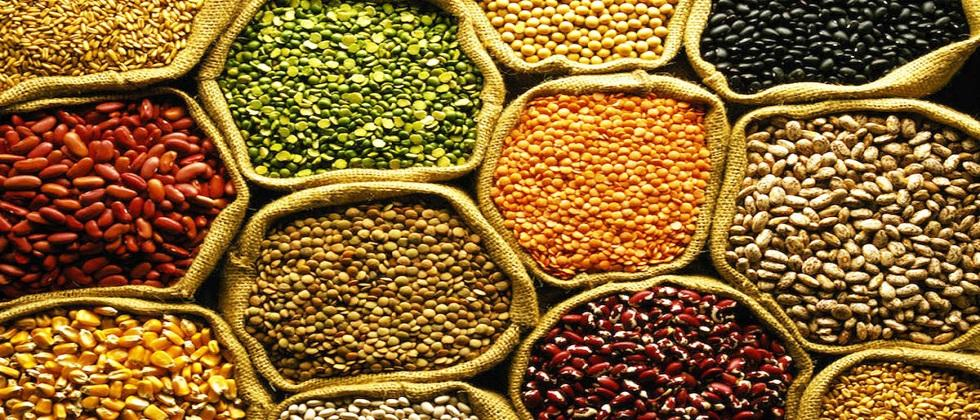 In Goa foodgrains will be distributed to students from next Monday