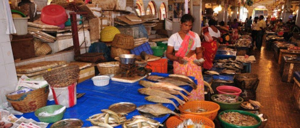 Madgaon Trading in wholesale fish market is smooth