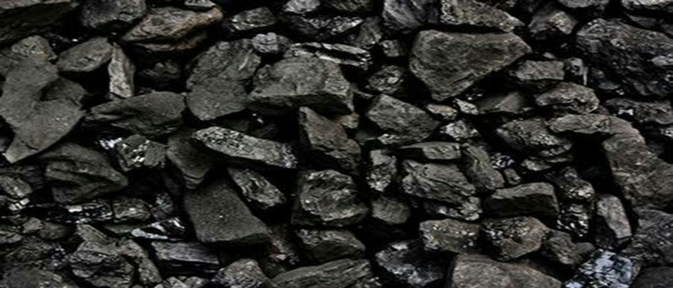 Minister Milind Naik inability to accept anti coal statement
