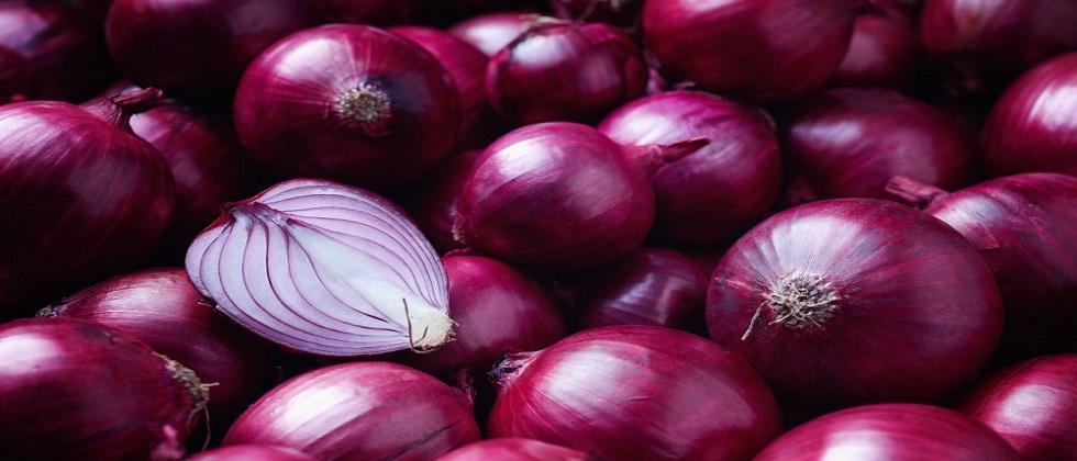 Onion concessions till January