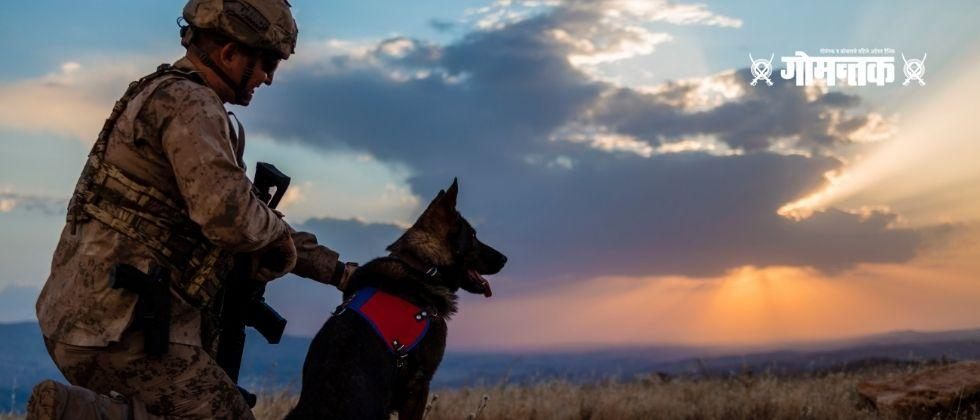 Dogs to help diagnose corona in Indian Army