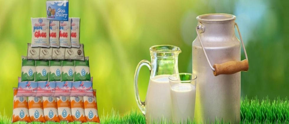 After Mahananda Goa Dairy milk became expensive