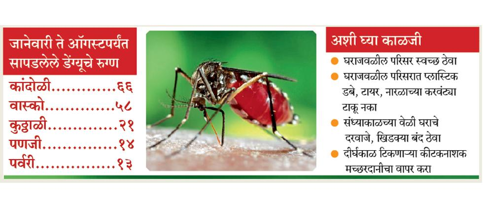 Goa: state rising dengue patients by Yashwant Patil