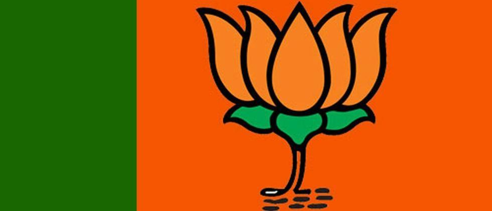 The BJP was helped by the party organization