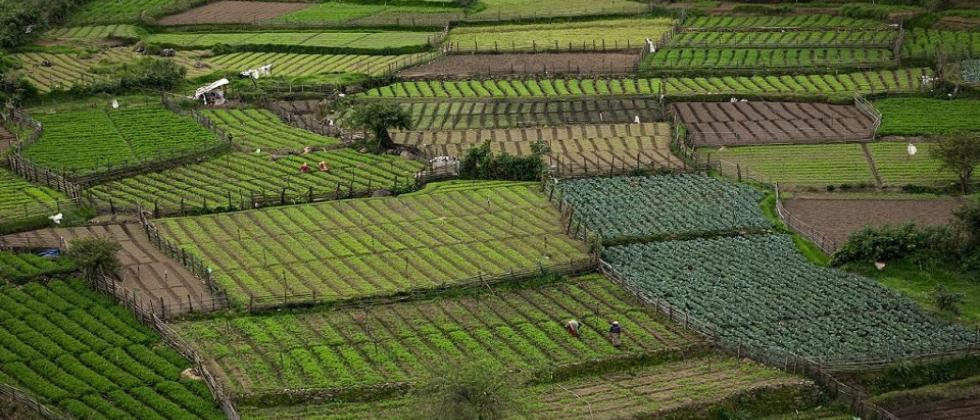 Final report on agricultural land use planning of Goa submitted
