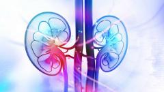 Lack of awareness causing the spike in kidney ailments in Goa's rural areas