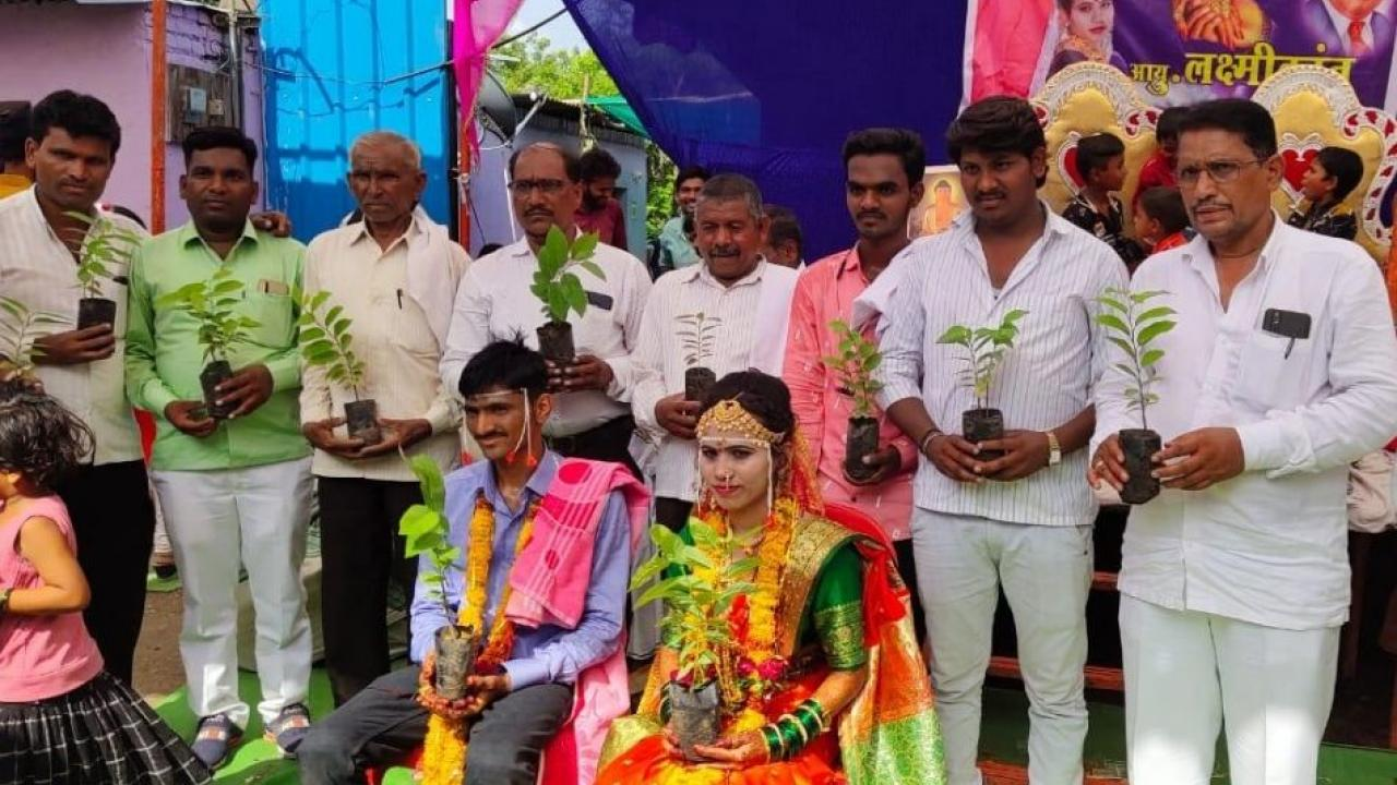 Wedding ceremony was held by giving tree