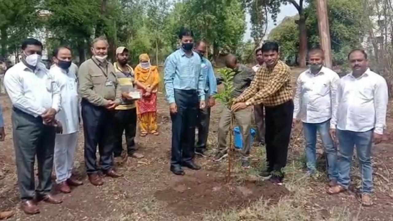 Tree planting in Dhule on the occasion of World Environment Day