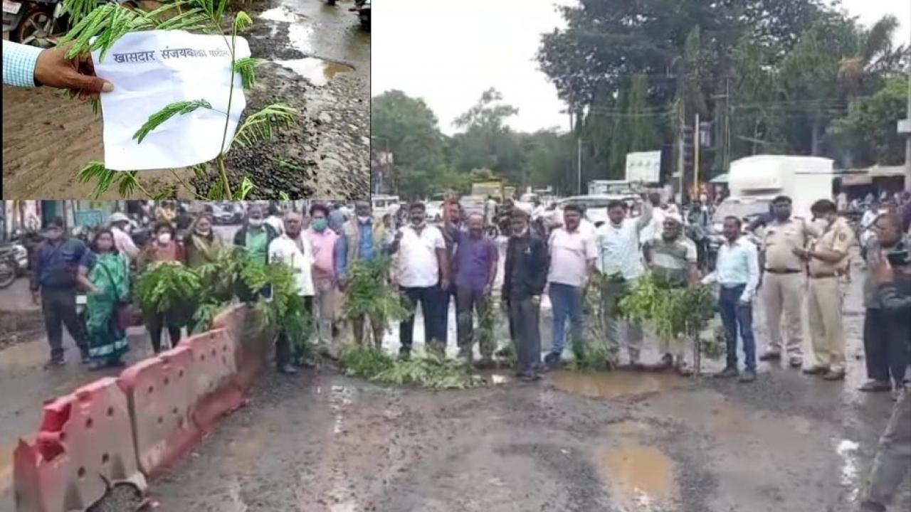 Movement by planting trees by the name of MPs and Commissioner
