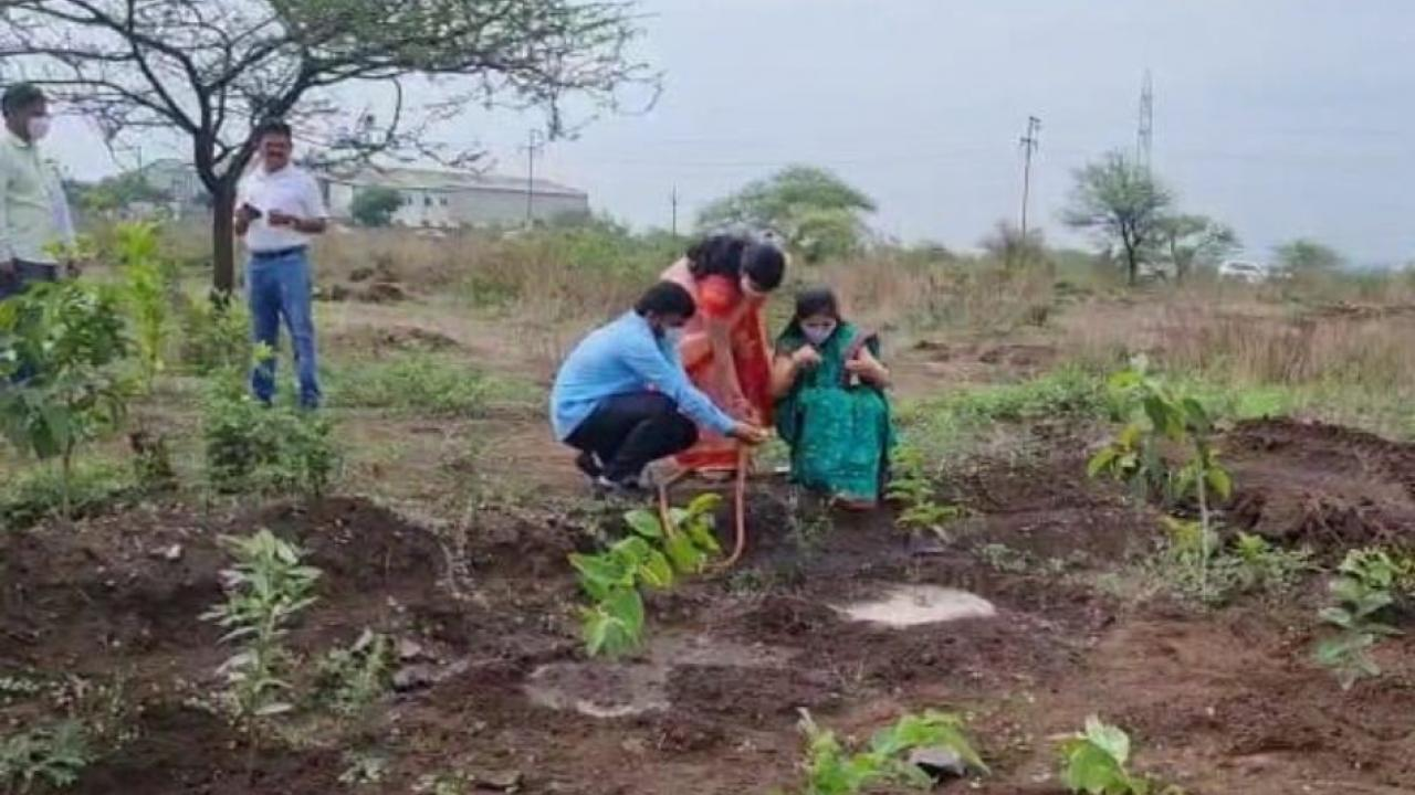 Tree planting on Nareshwar hill in Pune on the occasion of World Environment Day