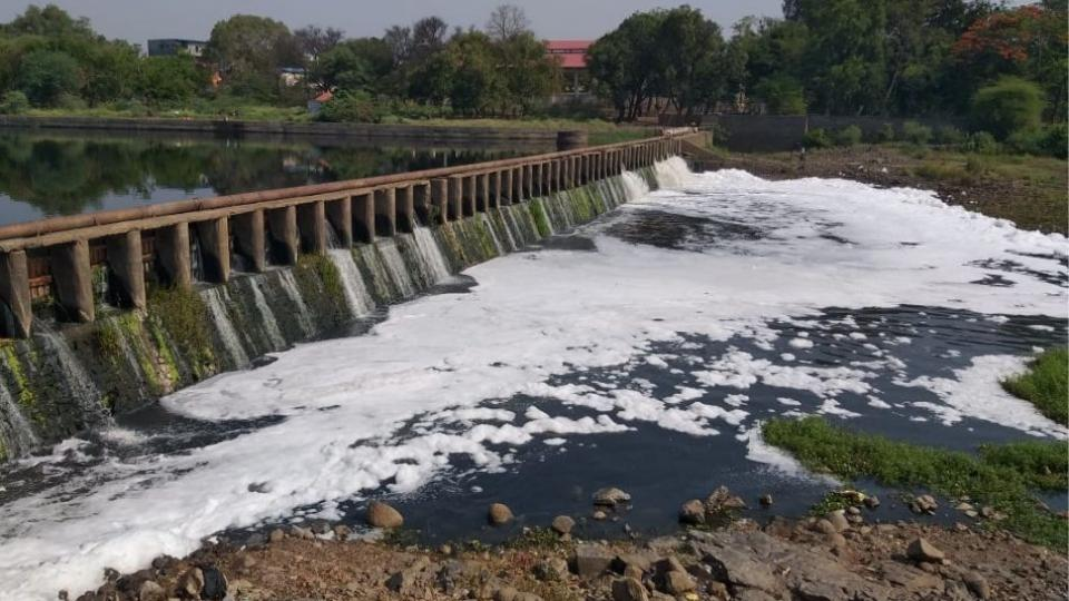 The Indrayani river is polluted due to mix of dirty water
