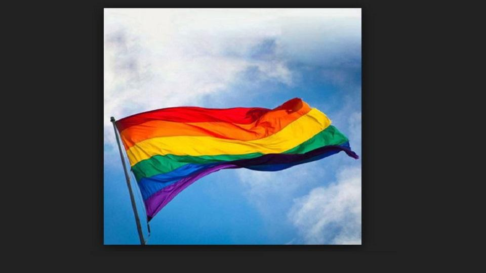 lgbt flag, gay sex , section 377