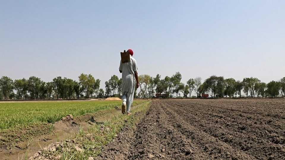 marathi news 4 lak 807 crore has been deposited in the loan account of so many lakh farmers