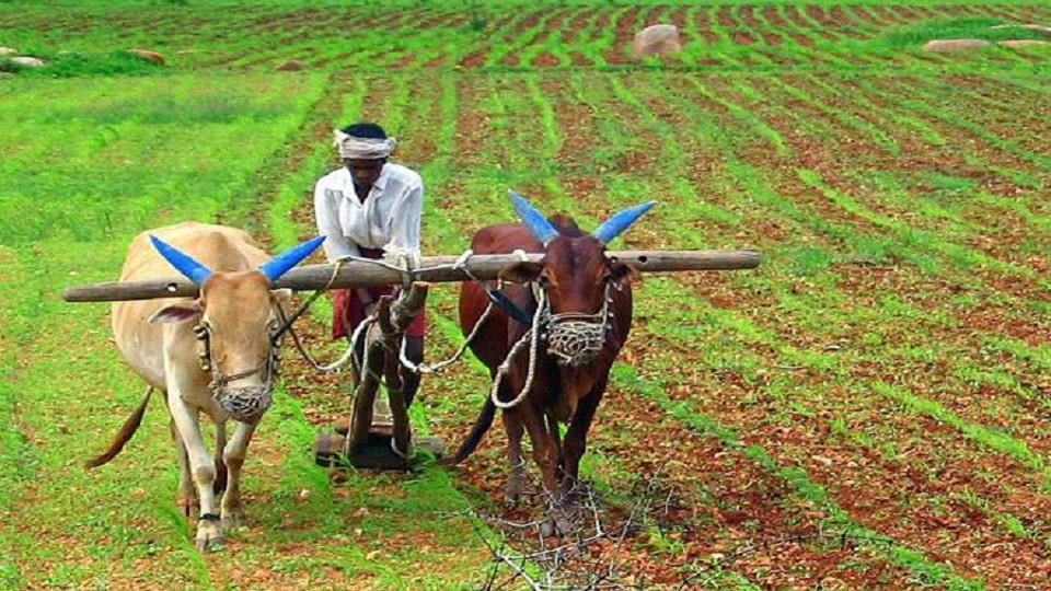 farmer loan waived off